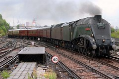 60009, 47760 CLJ 1Y50 Dorset Coast Express VIC - WEY 9-8-18 (6089Gardener) Tags: claphamjunction 60009 unionofsouthafrica a4 462 47760 class47 lswrmainline