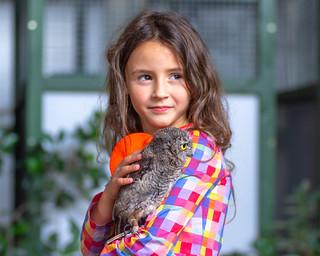 Olivia holding a western screech owl