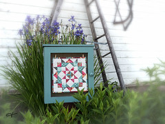 mini quilt (Jan Whybourne) Tags: quilt garden flowers fabric outside yard cotton teal pink kakabeka