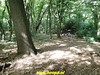 """2018-08-12          4e dag           Heuvelland          28 Km (88) • <a style=""""font-size:0.8em;"""" href=""""http://www.flickr.com/photos/118469228@N03/42240144830/"""" target=""""_blank"""">View on Flickr</a>"""