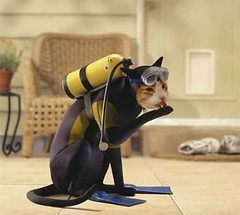 Watch high quality movies at http://ImovieSh.com/ (ImovieSh) Tags: cute dogs animals aww cats love girls movie animal images baby birds adorable