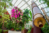 Telescope in the palm house (Percentrix) Tags: wedding lights cool flower flowers palmhouse palm house liverpool seftonpark sefton park telescope work decking merseyside keyrink key pond tunnel graffiti