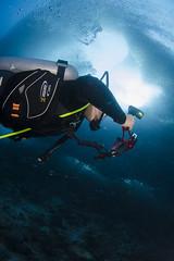 Under the school (Arne Kuilman) Tags: moalboal diving sardines fish school huge cebu philippines duiken underwater 105mm fisheye lens nauticam d7000 onderwater vis vissen diver duiker under