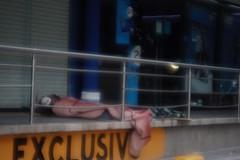 Exclusivo Hotel (felix-tigris1) Tags: calle situación desventura desafortunado homenaje exclusivo hotel mundo sociedad dormir enfrentar persona hombre guadalajara jalisco méxico ciudad suelo cobija gorra vagabundo indigente pobreza miseria marginado clases social sociales adversidad supervivencia urbano derechos humanos garantías individuales básicas infotunio dramático psicológico impactante emocional ropa coboja bote metal plastico tienda anuncio vidrio escaparate hobo homeless man