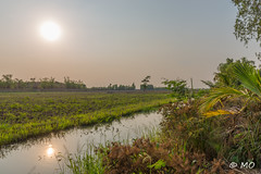 Even farther (mathieuo1) Tags: tramchim vietnam aia east world mekong delta south country landscape scape river water reflection sun sundown sunset sunbathing sunlight summer inspiration illumination illustration light view wide tripod hdr wideangle panorama