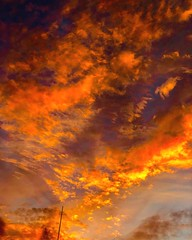 (Scorpiol13) Tags: skyporn iphoneography mobiography evening outdoors dramaticsky vibrance skyscape clouds sky orange sunset