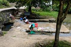 Laundry (Papaye_verte) Tags: lavoir laver women vãªtements ruisseau clothes laundry wash lessive stream
