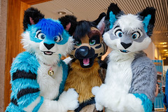 FOX_0331 (Kyoto Fox) Tags: chives kyu parker nfc nfc2018 nordicfuzzcon nordic fuzz con sweden furry fursuit fursuits