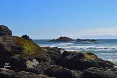 DSC_2220 ~ Indian Beach, Ecola State Park OR (stephanie.ovdiyenko) Tags: indianbeach oregon ecolastatepark pacificcoast pacificocean rockyshoreline ocean rocks coast