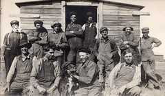 Unknown Men, Location and Date (CDHS) Tags: men bordercollie friends workers labour farmer harvest harvesters agriculture farming farm work