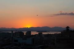 tramonto cagliaritano (mjwpix) Tags: ef85mmf18usm canoneos5dmarkiii michaeljohnwhite mjwpix tramontocagliaritano sunset bird mountains cagliari sky cityscape cagliariansunset