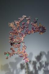 La feuille morte (benjamin urbain) Tags: cristaux minéraux nature macro d3300 cuivre natif dentelle