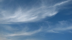 Feather clouds (Tanya Mass) Tags: sky clouds bluesky weather meteorology feathercloud cirrus cirruscloud whitefeathers