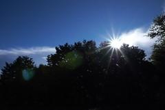 DSC_3118 (_andy_chung_) Tags: 車宿 塔塔加 上東埔 日出 英仙座流星雨 201808 武嶺 合歡山 星空 meteor 阿里山 新中橫 台21 台18 14甲 銀河 光軌