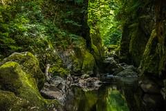 Fairy Glen Gorge (G. Warrink) Tags: wales visitwales cymru findyourepic lovewales beautifulwales discoverwales river stream water rocks fairyglengorge brook ffosanoddun