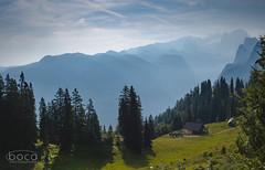 Gosau (Slobodan Siridžanski) Tags: boca gosau 2018 oberösterreich austria at