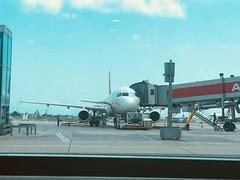 TC-JRR (Kevin Biétry) Tags: fribspotters kevinbiétry istanbulatatürk atatürk istanbul turkishairlines airbusa321 a321 airbus tcjrr jrr tc