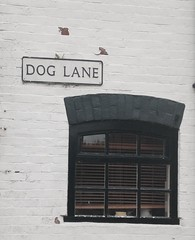 Dog Lane - Bewdley (kpc) Tags: bewdley lane dog