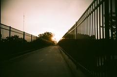 Sunrise bridge (Jim Davies) Tags: vivitarultrawideandslim vivitar expired hardexpired kodak portra 160vc colourfilm 35mm film filmfilmforever analogue veebotique plasticcamera toycamera uws 2017 believeinfilm plastic compact summer ohio usa columbus bikeride