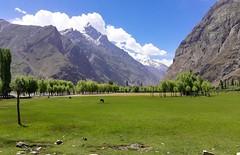 Darkut Meadows (Asad Sheikh) Tags: yasinvalley ghizar ghizer gilgitbaltistan northernpakistan beautifulpakistan beautifullandscape meadows grassland greenbluewhite