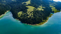 Rossiniere - Suisse (Alexis Rangaux) Tags: mavicpro drone nature fantasticnature paysage suisse landscape switzerland lac lake blue green foret mountain
