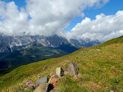 Sentiero del Col Quaternà (antonella galardi) Tags: veneto belluno dolomiti dolomites 2018 pusteria comelico padola altoadige colquaternà sentiero escursione escursionismo trekking hiking