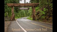 Mount Rainier National Park | Ep. 6 (Nature1844 Photography) Tags: mountrainiernationalpark stevenscreektrail woodland forest ferns fungi footbridge stream