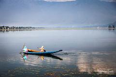 Women rowing their boats out on Dal Lake, Srinagar, Kashmir, India (September 2012) (Cor Lems) Tags: kashmir himalayas boat lake rowing srinagardallake india
