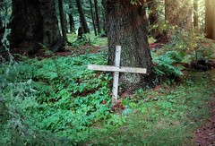 A special place . . . (JLS Photography - Alaska) Tags: gravemarker cross forest forestfloor jlsphotographyalaska alaska landscape trees tree leaves green woods woodland grass soil