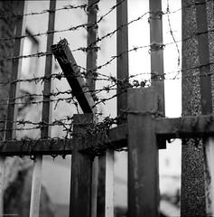 Escape is Not Possible (RunnyInHongKong) Tags: mediumformat nikoncoolscan9000 akasaka vuescan minatoku blackwhite kodaktmax400 hasselblad500cm japan tokyo film