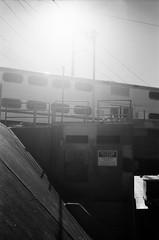 San Jose (bior) Tags: caltrain train overpass leicam3 sanjose summicron 50mm tmax100 tmax kodaktmax film flare