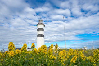 Halten lighthouse in summer meadow