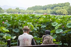 dsc_1363 (gaojie'sPhoto) Tags: hang zhou hangzhou westlake west lake