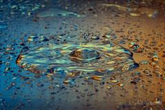 Vivid Liquid Art (gporada) Tags: macro liquidart vivid colorful bright splash experiment effects droplet acrylic water dropletmachine