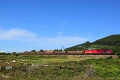 Moledo (REGFA251013) Tags: 6004 takargo tren comboio galicia portugal moledo minho linha do euor4000 madera