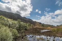 Highland Marshes (GlenTR) Tags: scotland morar unitedkingdom gb