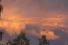Clouds at Sunset  / Dresden / 2018-07-26 (astrofreak81) Tags: clouds sunset sun wolken sonnenuntergang sonne sky himmel heaven light orange storm rain 20180726