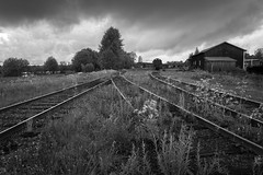 Shiny railroad tracks (Helena Normark) Tags: railroad railroadtracks shiningrailroadtracks rain mood atmosphere strömsund jämtland sweden sverige sonyalpha7ii a7ii carlzeissdistagont28mmf28 cy28mm28