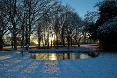 The sun reflected. (Eddie Crutchley) Tags: europe england cheshire nature sunset simplysuperb snow sunlight shadows winter trees
