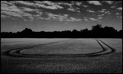Round and round (paullangton) Tags: monochrome blackandwhite field countryside nature crops wheat hay harvest hertfordshire sky clouds contrast tractor lines canon skancheli mono bw