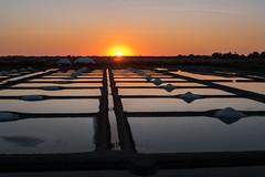 salt marshes (alain01789) Tags: marais salant crepuscule paysage landscape sun soleil reflets reflections sunset dusk island ile noirmoutier salt marsh