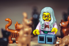 One more wouldn't hurt. (3rd-Rate Photography) Tags: lego crazycatlady cat cats minifig minifigure internationalcatday toy toyphotography canon 5dmarkiii 100mm macro jacksonville florida afol 3rdratephotography earlware 365