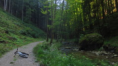 um den Gaisberg (Automatikman) Tags: 0415mw bike mtb salzburg austria österreich flachgau biketour winterradl winterbike bergziege 20 hardtail