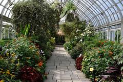 Path Under Glass (Eddie C3) Tags: newyorkbotanicalgarden botanicalgardens conservatory enidahauptconservatory bronxnewyork