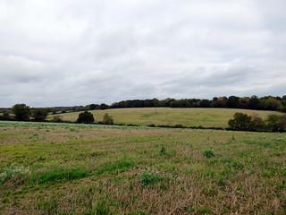 GOC Cholesbury to Chartridge 011: Landscape
