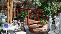Garden Bridge - Variety Shop (G3nie) Tags: canoneos1100d efs24mmf28stm aspectratio169 finland variety shop store diverse miscellaneous varied stuff interior inside things kasvihuoneilmiö bridge table chair book statue sculpture jungle plant lamp tree wood garden