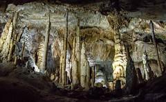 Domaine des Grottes de Han, Belgique (Elodie Henry) Tags: grotte