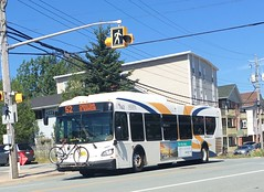 First Xcelsior (The Halifax Transit Fan!) Tags: hfxtransit1162 transitvehicle transitbus transit busphotography bus bike hfxtransitroute52 halifax xcelsiorxd40 newflyerxd40 newflyer halifaxmetrotransit canadiantransit publictransit canadianpublictransit hfxtransit halifaxtransit