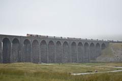 66761 on the Ribblehead Viaduct (Tom 43299) Tags: train ribblehead ribbleheadviaduct 66761 gbrailfreight gbrf