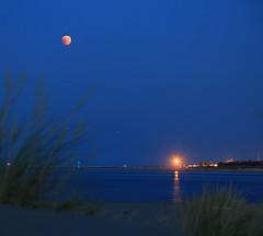 Moon, mars, memories (Robyn Hooz) Tags: portocaleri luna moon eclipse blue sorgente sources mars marte stelle cielo ombra shadow bushes cespugli venezia veneto memories ricordi